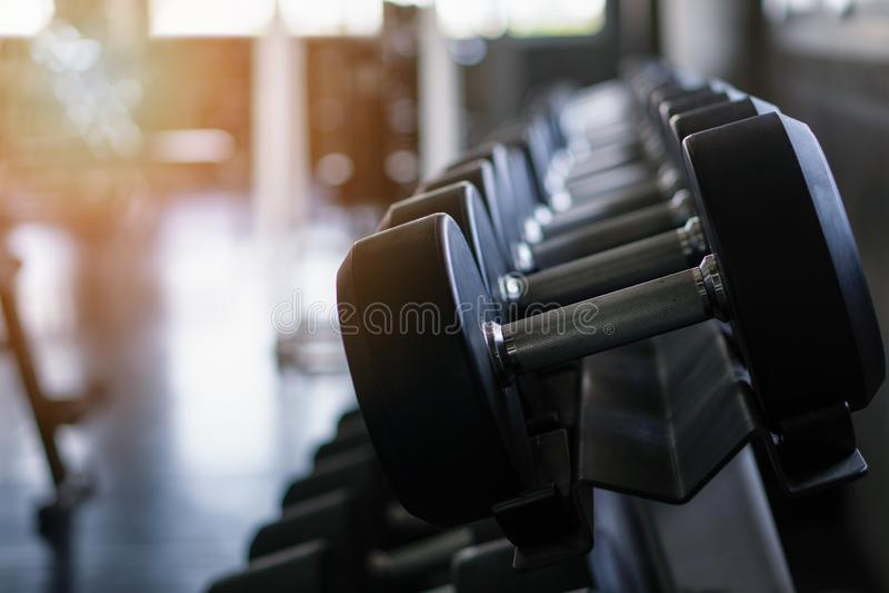 Dumbells on rack. At gym stock image