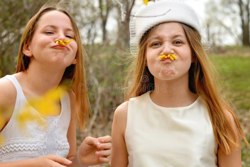 Dumme Frühjahrschwestern stockbild