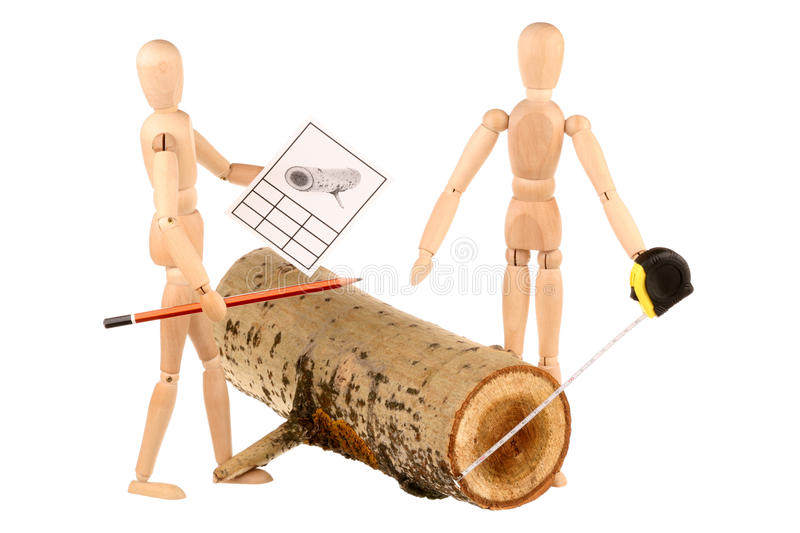Dummies And Log Stock Photography