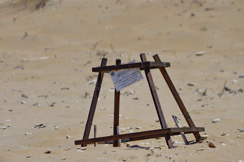 Dummkopfmeeresschildkrötenest (Caretta Caretta) stockbild