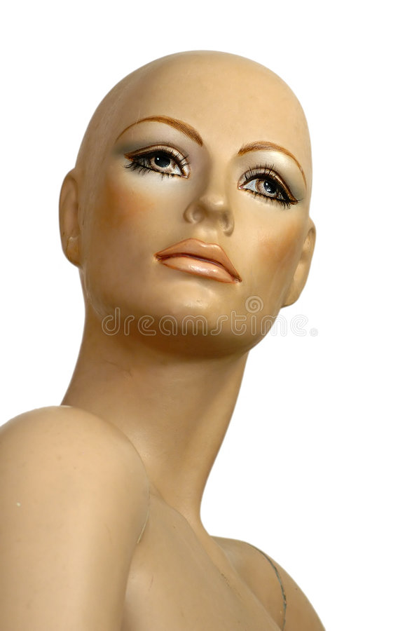 Download Dummy stock photo. Image of look, boutique, close, closeup - 651494