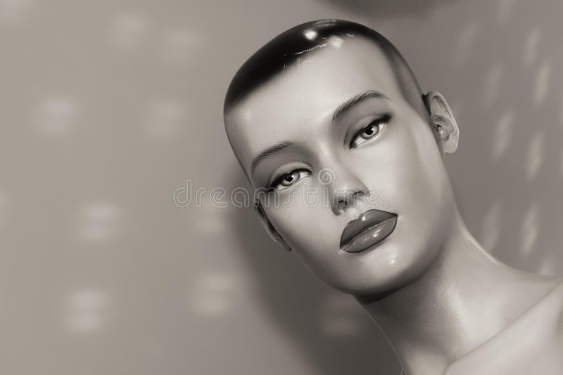 Download Dummy head stock image. Image of female, mannequin, clothing - 22626525
