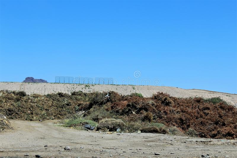 Dump. Landfill where unwanted green waste is disposed of royalty free stock image