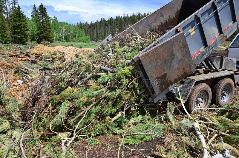 Dump Trailer Dumping Limbs. A dump trailer dumping tree limbs at a green waste dump royalty free stock image