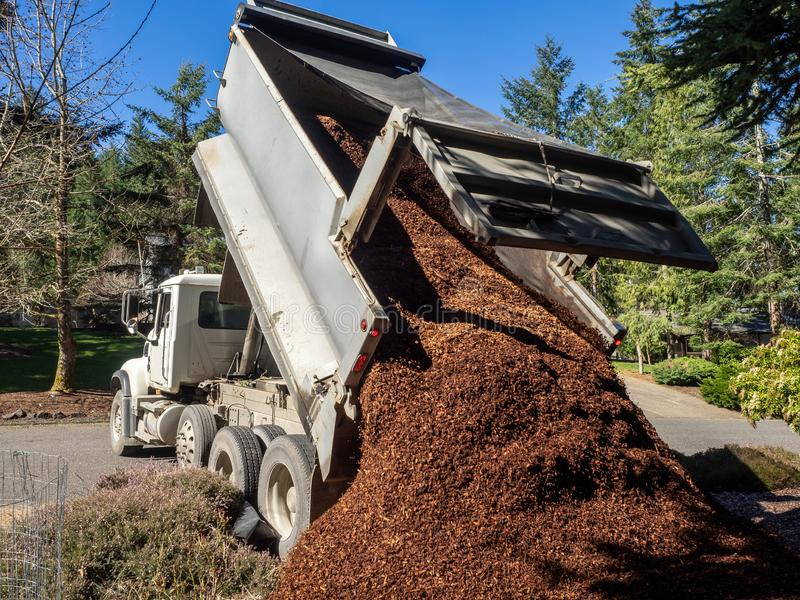 Dump Truck Dumping A Load. Dump Truck Dropping Load of landscape bark stock photography