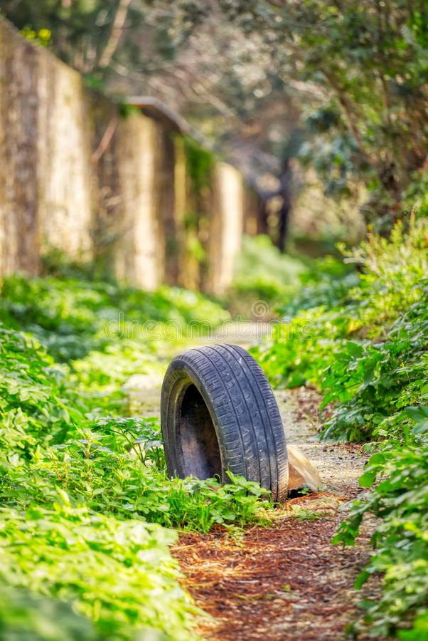 Dumped worn tire stuck in a muddy soil pathway royalty free stock photo