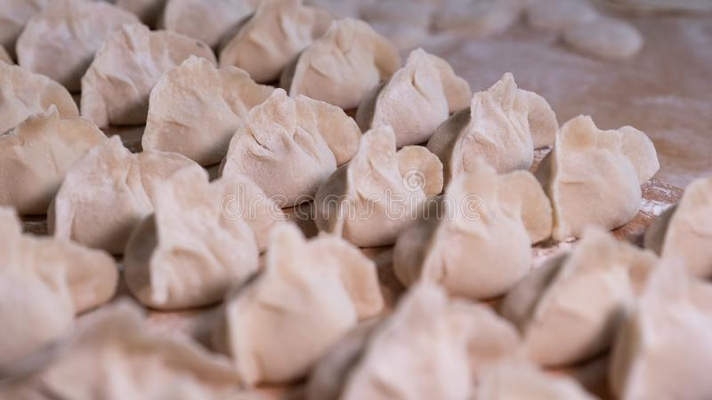 Dumplings. One of the most traditional delicacies in China. Not cooked. Food must be eaten during the Spring Festival stock photography