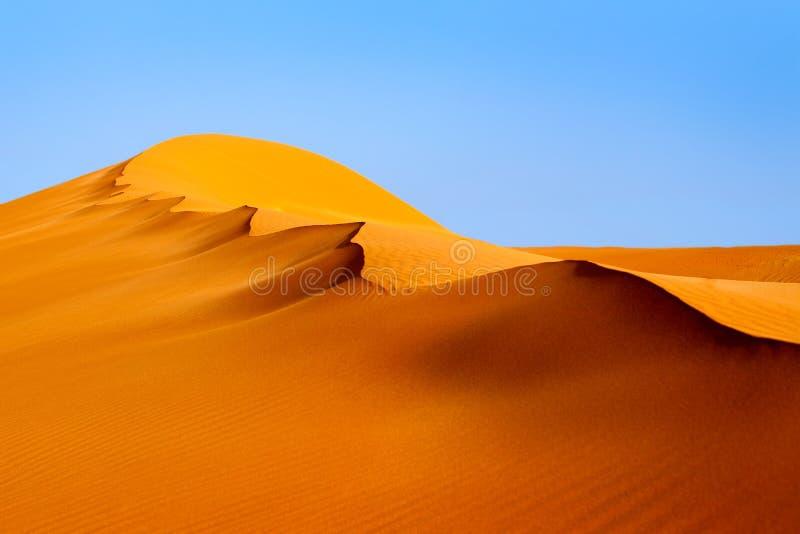Duna alaranjada de Sandy sob o céu claro azul no parque Sossusvlei de Naukluft do deserto de Namib, Namíbia, África do Sul imagem de stock