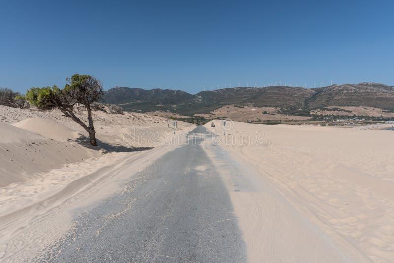 Duna de areia de Bolonia, Espanha de Andalucia imagens de stock