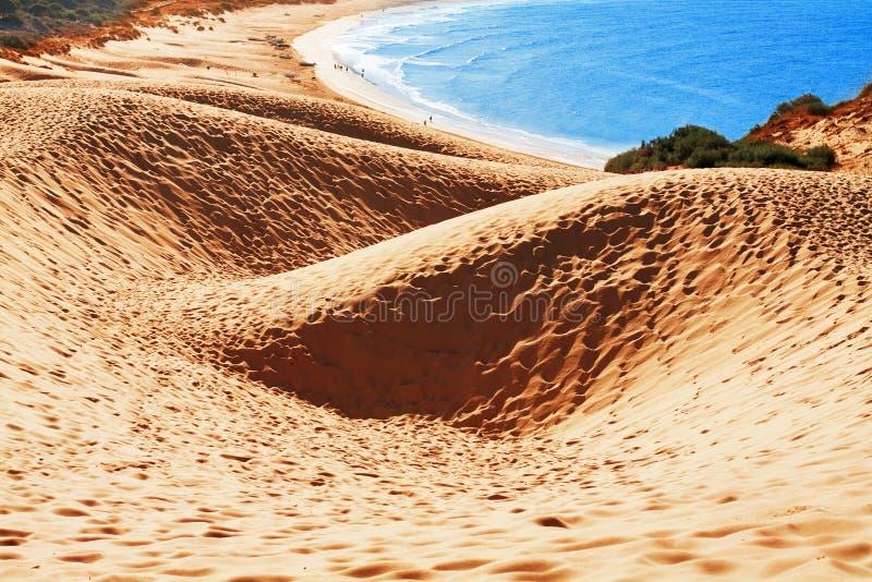 Duna de areia da praia de Bolonia, província Cadiz, Andalucia, espinha imagens de stock royalty free