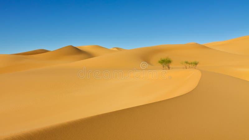 Duna de areia - mar da areia de Awbari - deserto de Sahara, Líbia imagem de stock