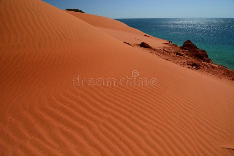 Duna de areia no parque nacional de François Peron Baía do tubarão Austrália Ocidental imagens de stock