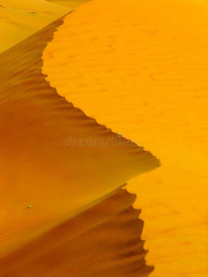 Duna de areia perto do vermelho grande em Dubai imagens de stock