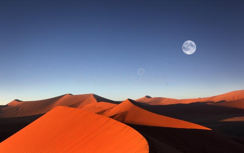 Duna de areia vermelha, Sossusvlei, Namíbia imagens de stock royalty free
