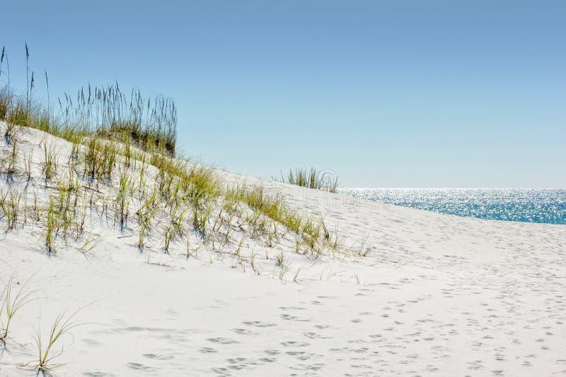Duna de arena fotos de archivo libres de regalías