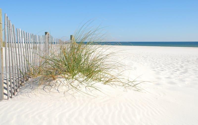 Duna de arena de la playa fotografía de archivo