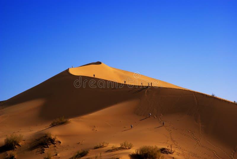 Duna de arena en desierto fotografía de archivo