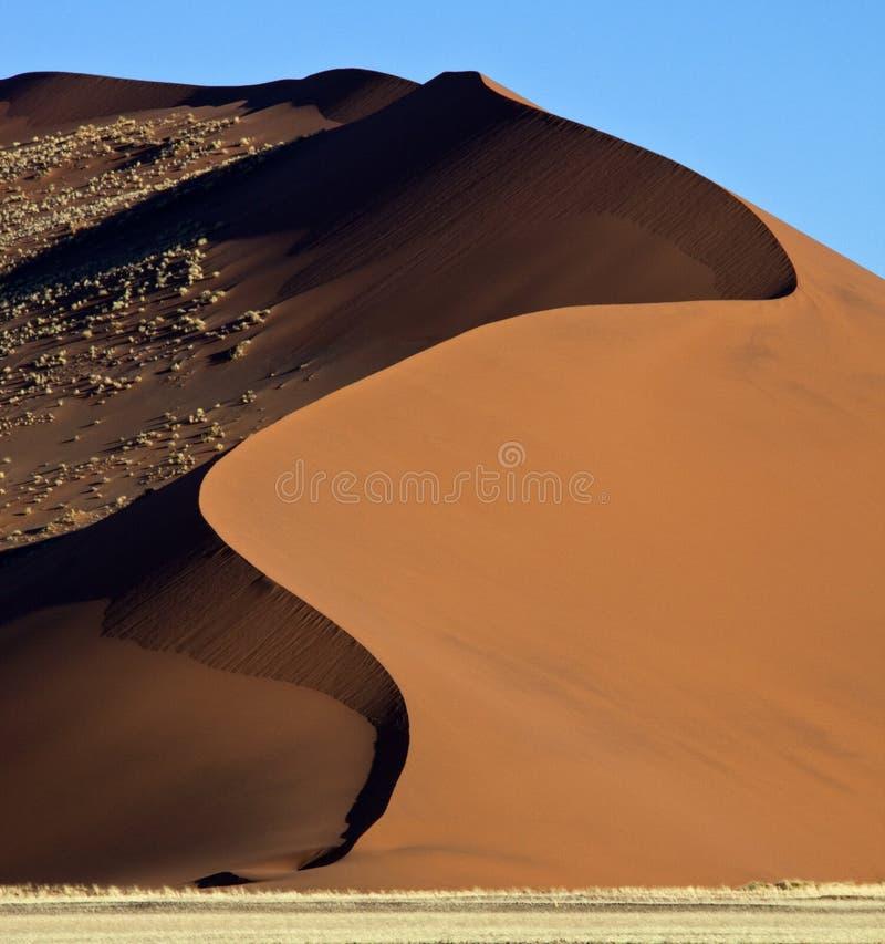 Duna de arena en el desierto de Namib fotos de archivo libres de regalías