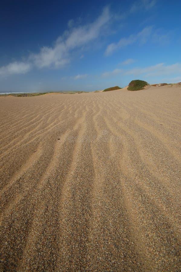 Duna de arena en la playa foto de archivo libre de regalías