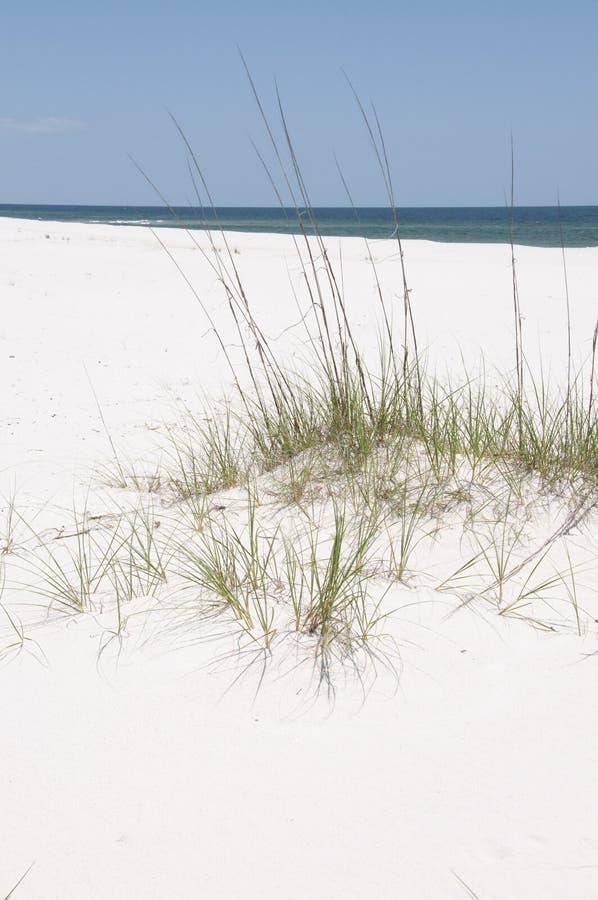 Duna de arena hermosa de la playa fotos de archivo