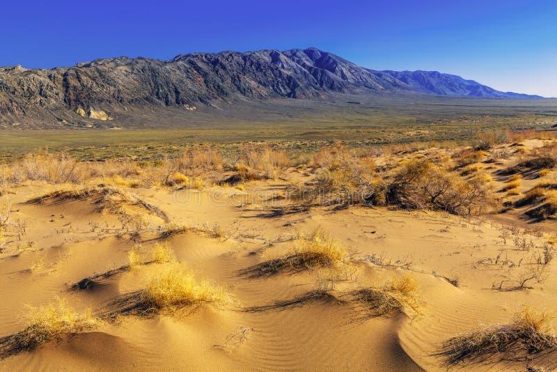 Duna de arena que pasa a las montañas de la estepa y de la piedra imagen de archivo libre de regalías