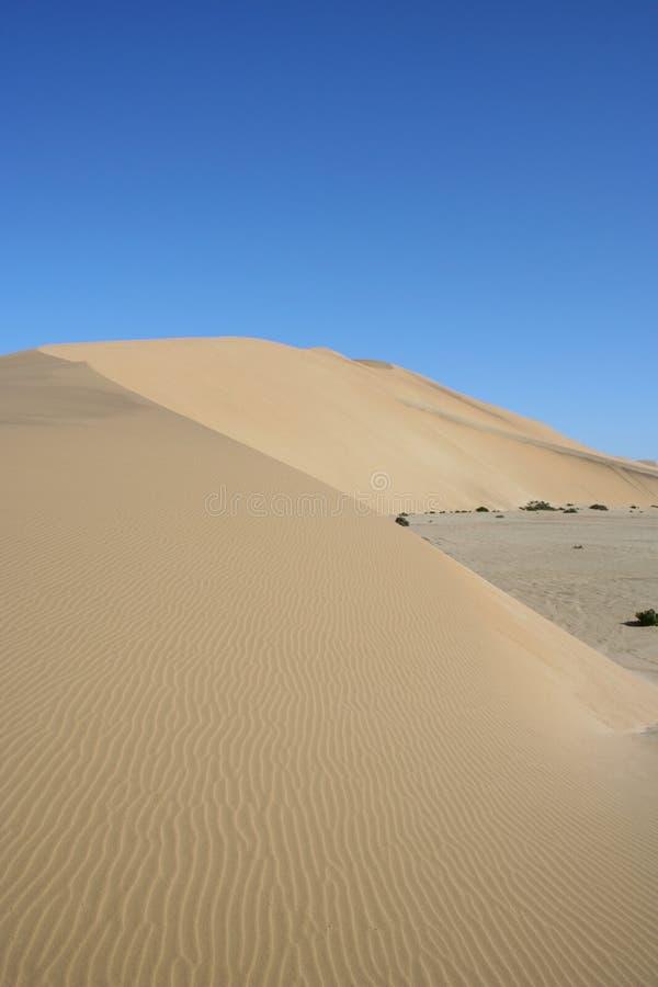 Duna del desierto, duna 7, Namibia fotografía de archivo libre de regalías