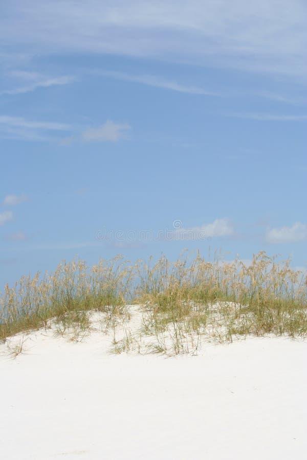 Duna di sabbia immagini stock
