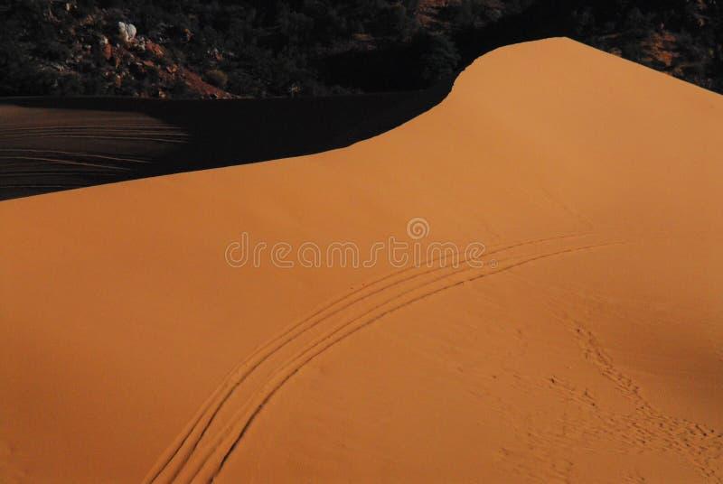 Duna di sabbia rossa enorme dell'Arizona con le piste con errori fotografia stock libera da diritti