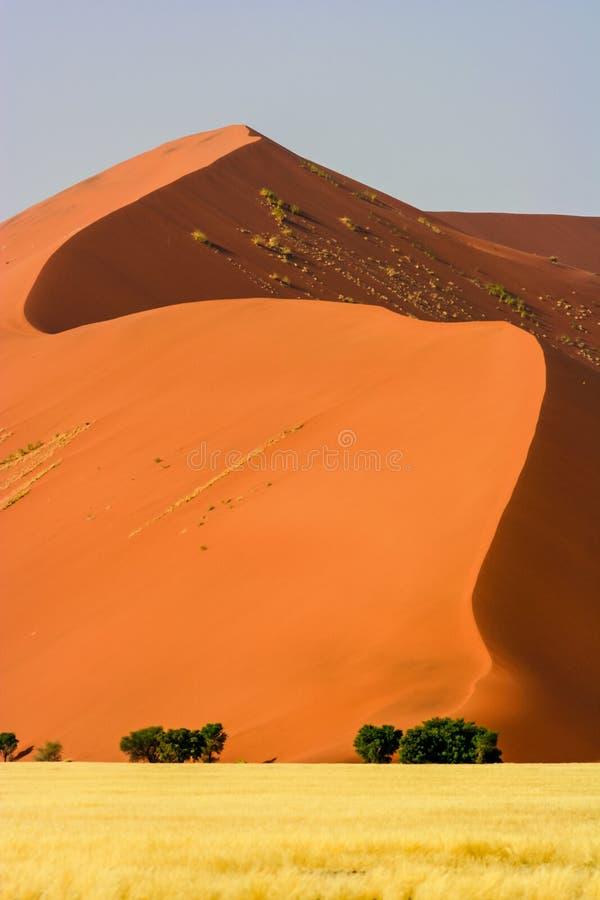 Duna di sabbia rossa nel deserto di Namib immagine stock libera da diritti