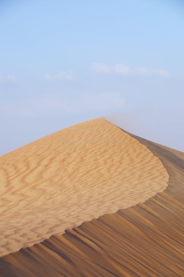 Duna do deserto foto de stock