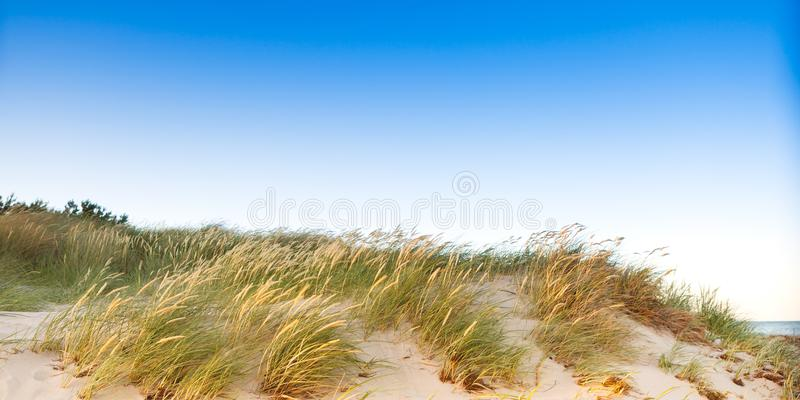 Duna e cielo blu fotografia stock libera da diritti