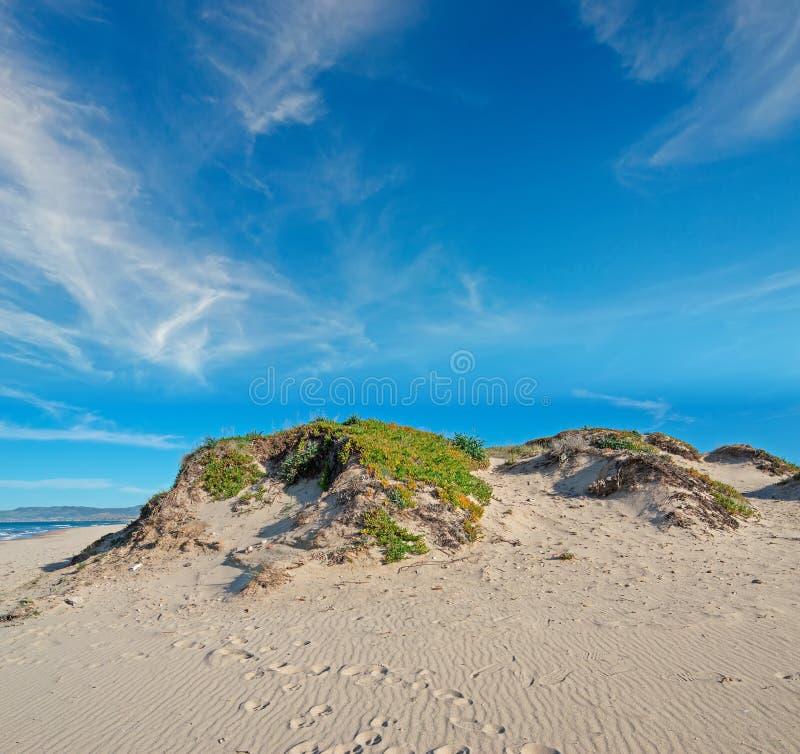 Duna e nuvens de areia fotografia de stock royalty free