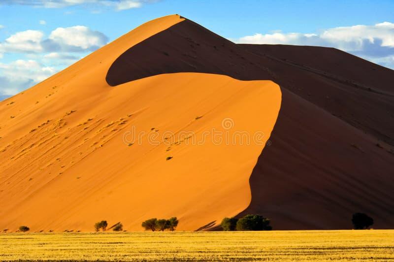 Duna 45 en Namibia Duna en el desierto de Namib, Namibia foto de archivo libre de regalías