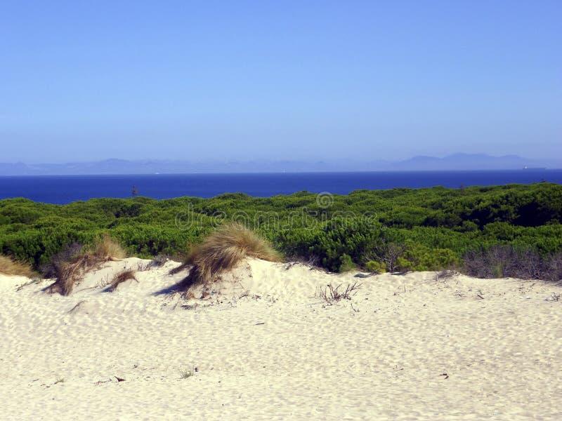 Duna na praia de Bolonia, Cadiz, Espanha fotos de stock royalty free