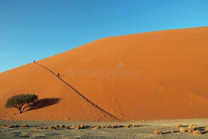 Duna 45 perto da entrada de Sossusvlei e de Deadvlei no parque de Naukluft no deserto do de Namib em Namíbia imagens de stock
