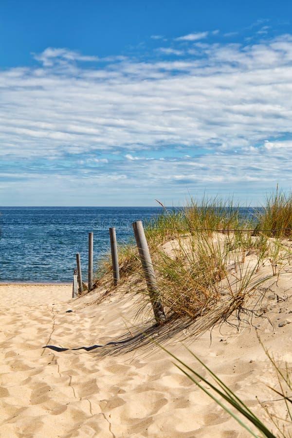 Duna vista a Mar Baltico, mare della spiaggia della duna di sabbia dell'erba fotografia stock