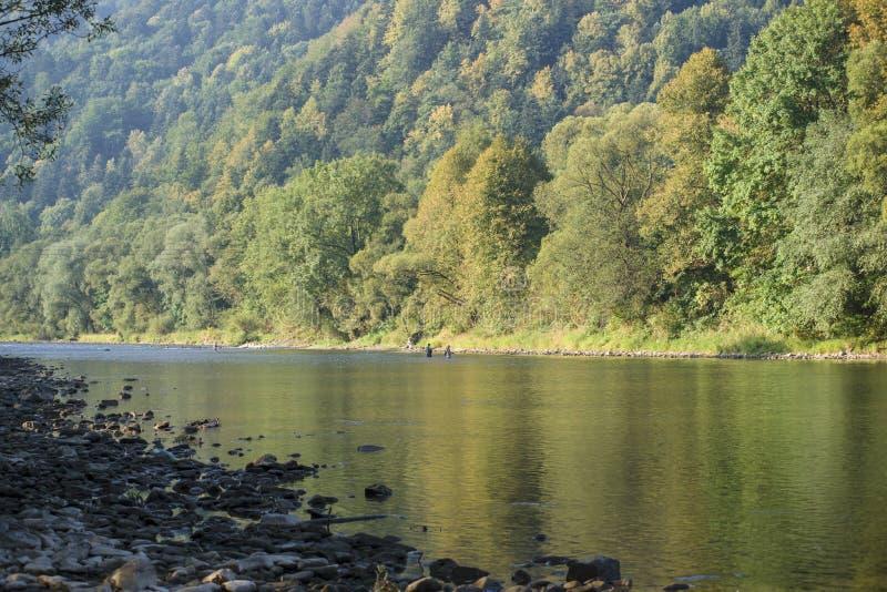 Dunajec-Fluss stockfotos