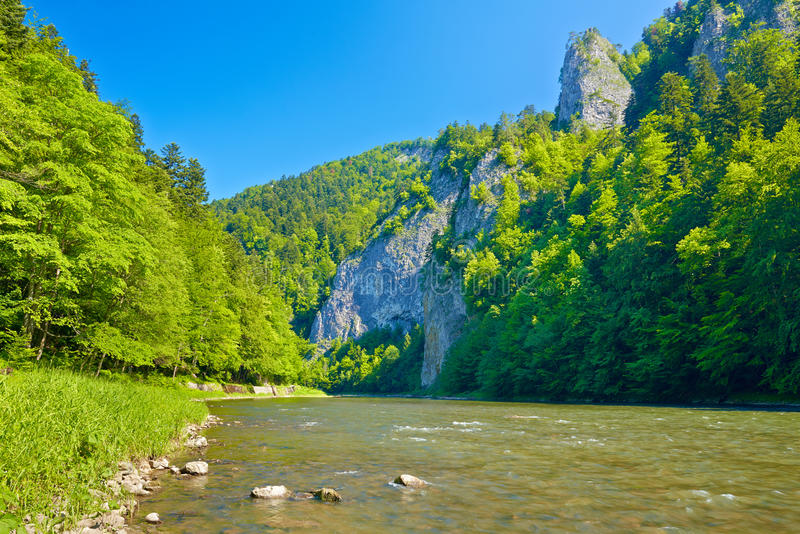 Dunajec River Gorge. Beautiful sunny landscape with Dunajec River Gorge stock photography