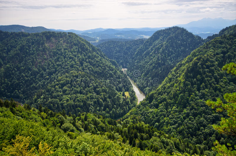 Dunajec river in Pieniny mountains - Poland. Dunajec river in Pieniny mountains - view from the peak, Poland stock images