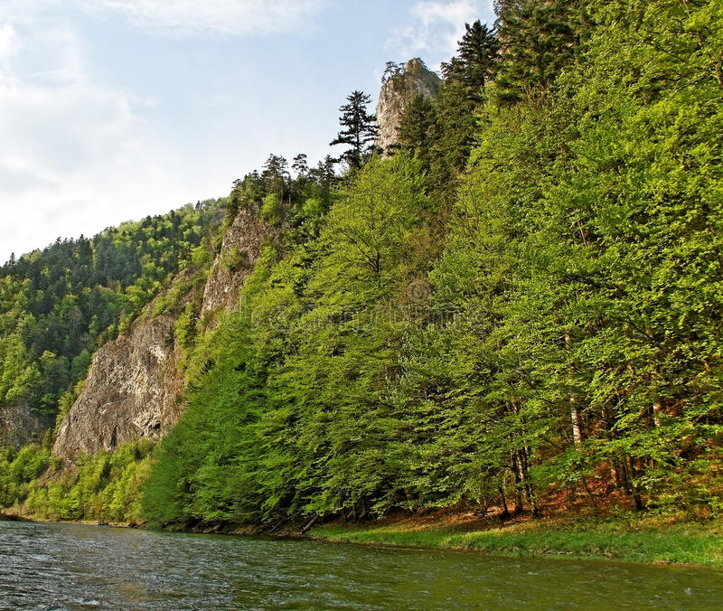River Dunajec. royalty free stock image