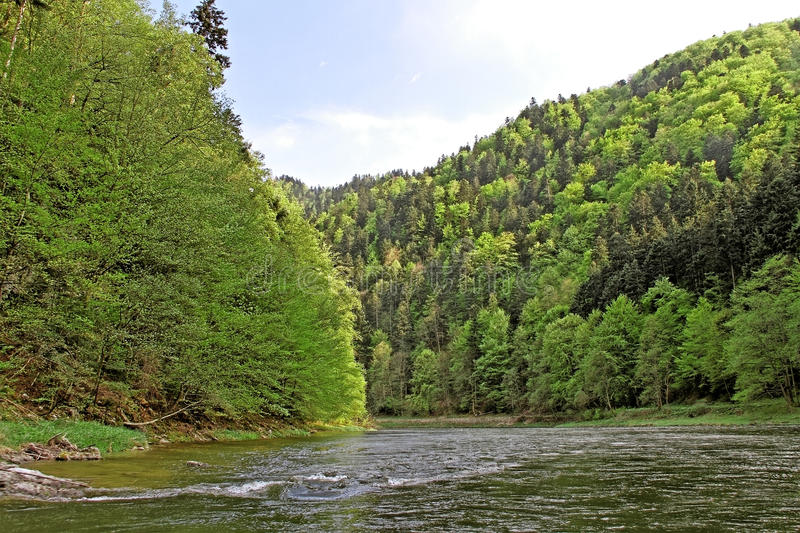 River Dunajec. stock photos