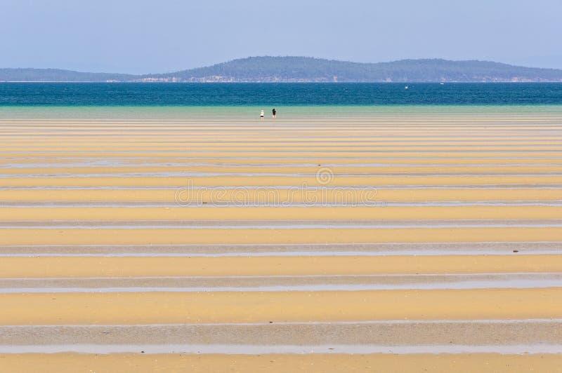 Dunalley-Bucht bei Ebbe - Tasmanien stockfotografie