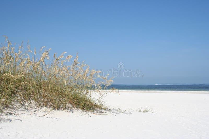 Download Dunas imagen de archivo. Imagen de hierba, duna, bahía - 189657