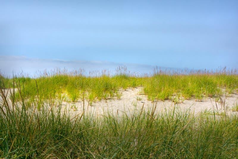 Dunas da beira e de areia da grama da linha costeira contra o céu azul imagens de stock royalty free