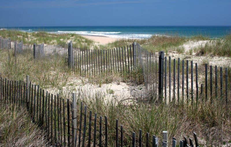 Dunas da praia fotos de stock