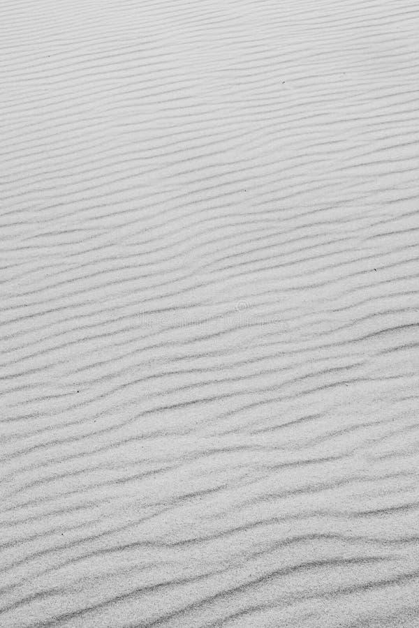 Dunas de areia brancas fotos de stock royalty free
