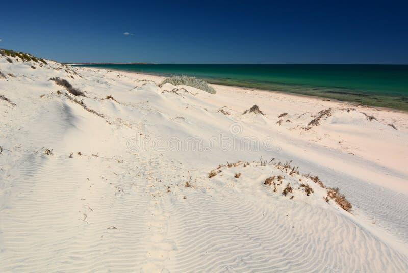 Dunas de areia brancas da baía da garrafa Parque nacional de François Peron Baía do tubarão Austrália Ocidental imagens de stock