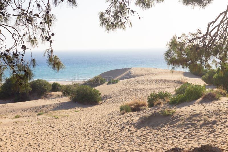 Dunas de areia brancas na praia de Patara Antalya Turquia fotografia de stock royalty free