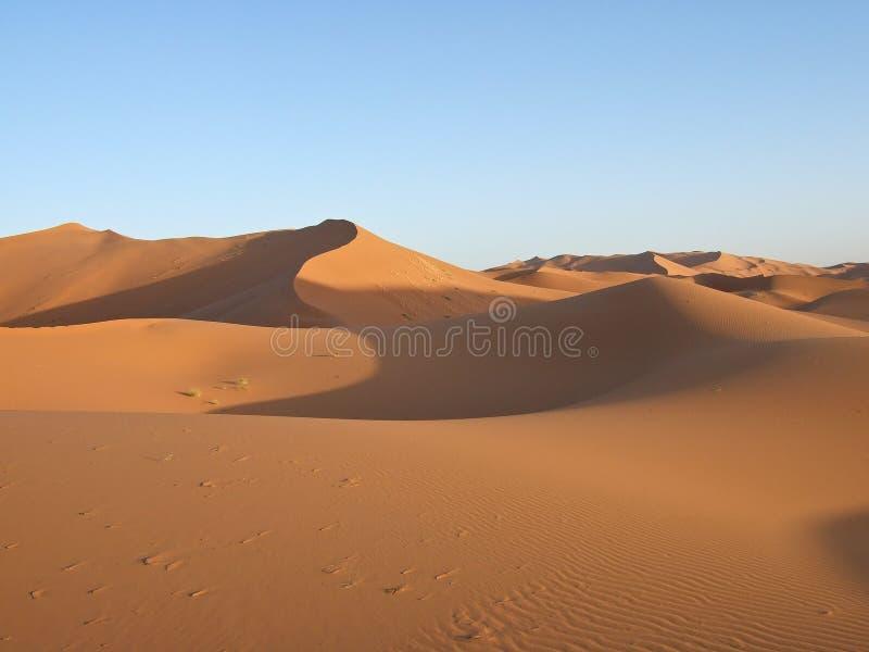 Dunas de areia de Sahara fotografia de stock royalty free