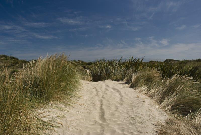 Dunas de areia de Stewart Island foto de stock